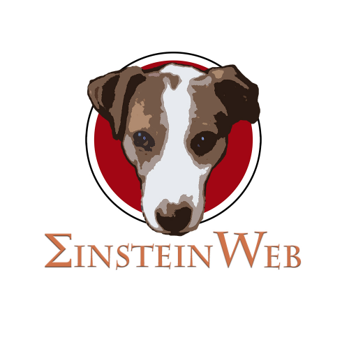 Einstein web design business and company logo on Set a Time